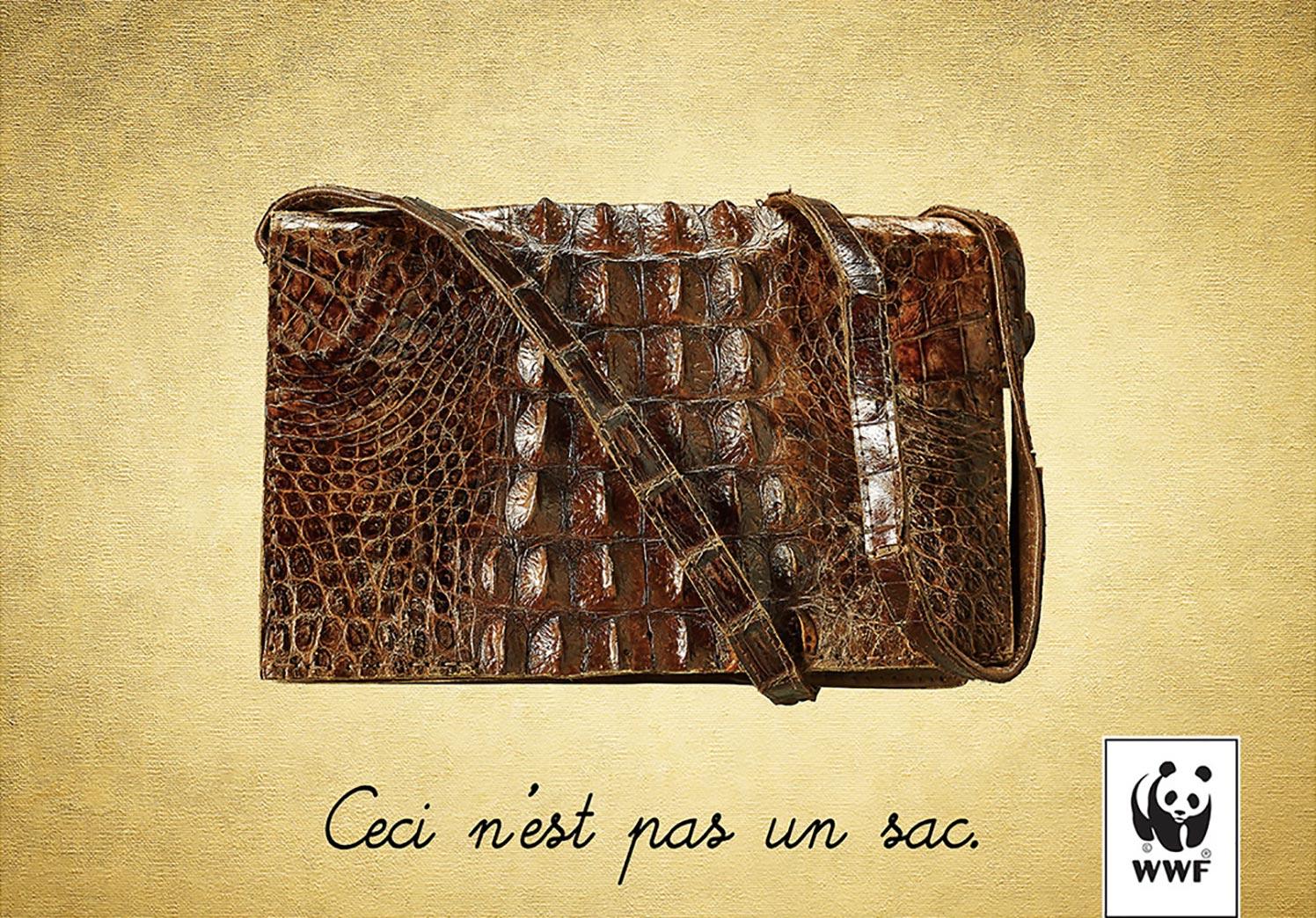 bag-or-alligator-