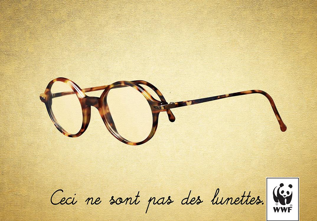 glasses-or-turtle-