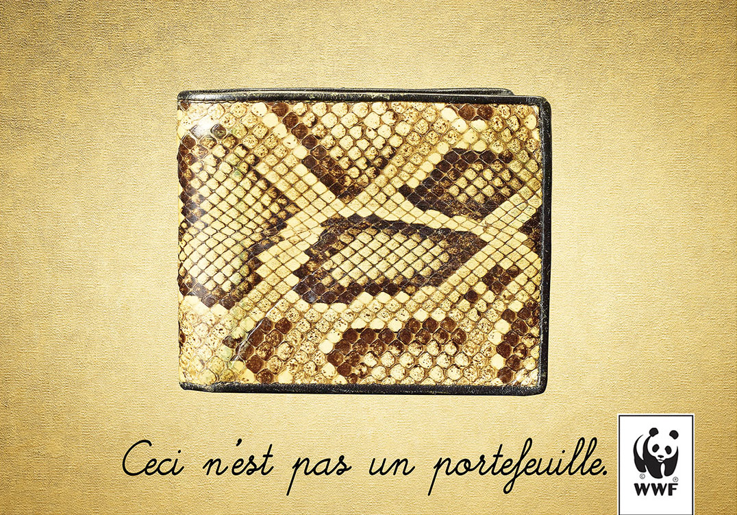 wallet-or-python